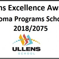Ullens Excellence Award in IB Diploma Programs Scholarship