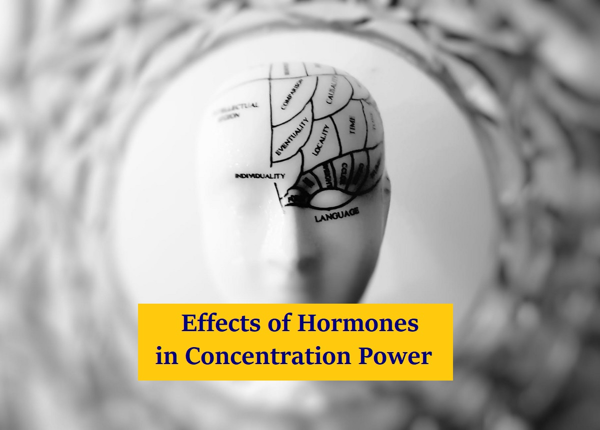 Effects of Hormones in Concentration Power