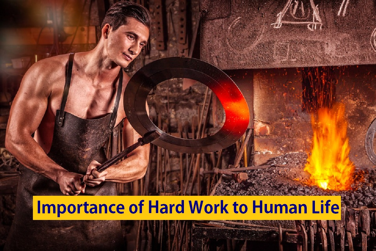 Importance of Hard Work to Human Life
