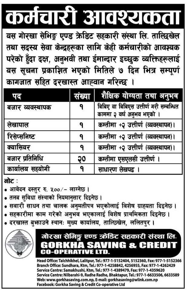 Gorkha Saving and Credit Cooperative Vacancy