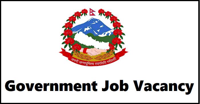 Government Job Vacancy