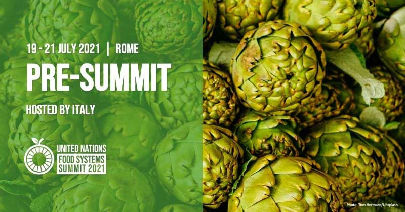 United Nations Food Systems Pre-Summit 2021
